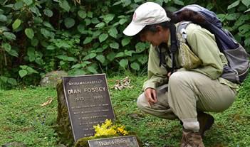 4 Days Rwanda Gorillas & Dian Fossey grave hike