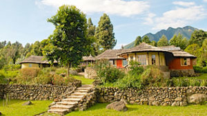 Where to Sleep in Mgahinga