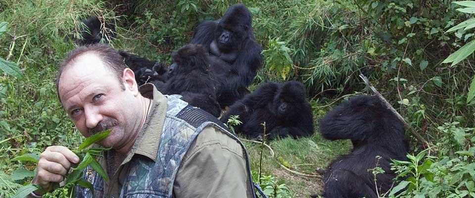 Gorilla Habituation expereince