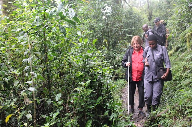 Why hire a porter for gorilla trekking